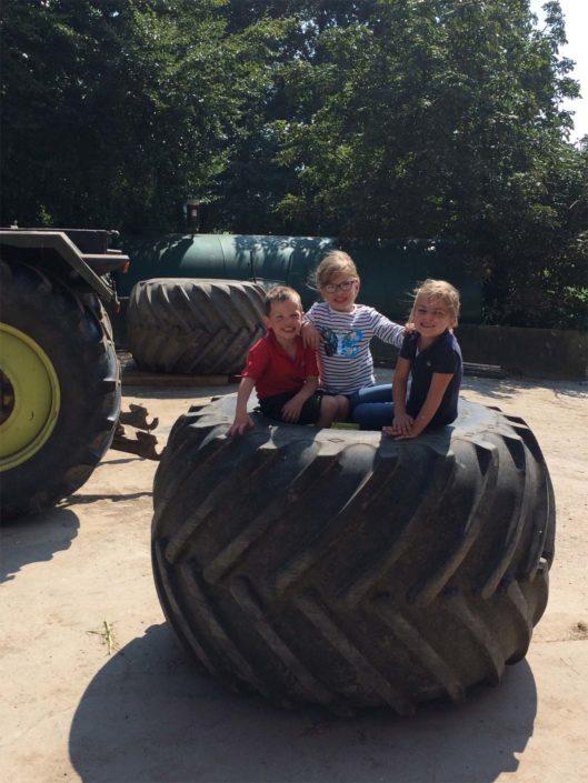 Bauernhof-Kinderparadies