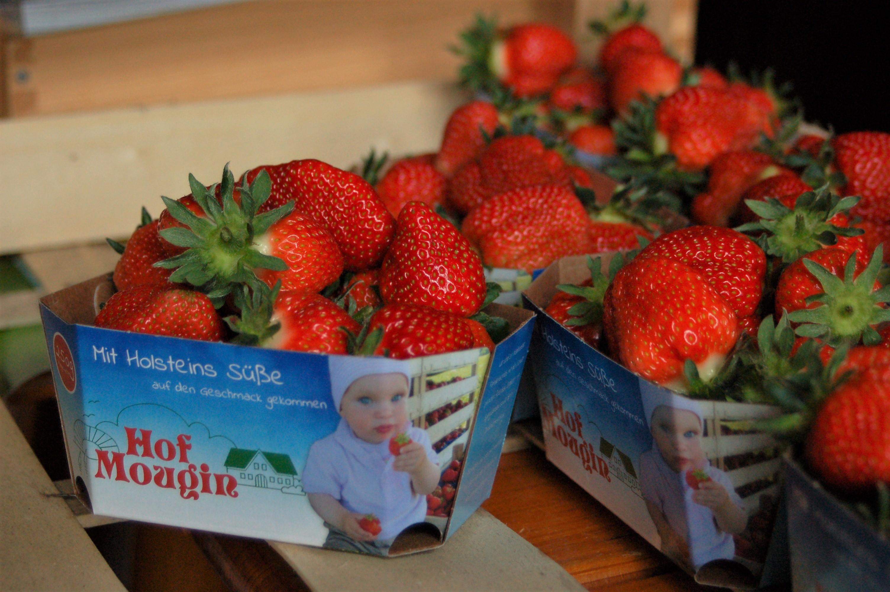 Die ersten Erdbeeren sind da