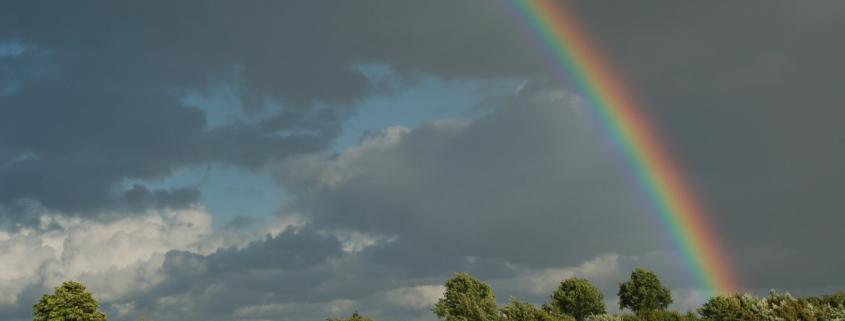 Regenbogen über unserem Acker