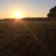 Sonnenaufgang in Ostholstein